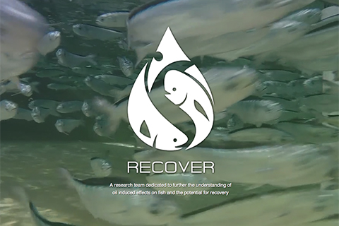 Marine Biology and Ecology RECover